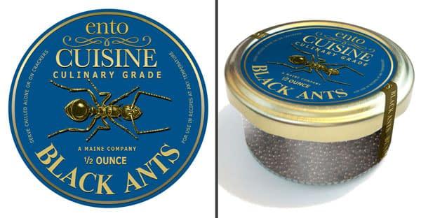 Culinary Grade Edible Ants